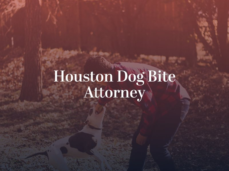 Houston dog bite attorney